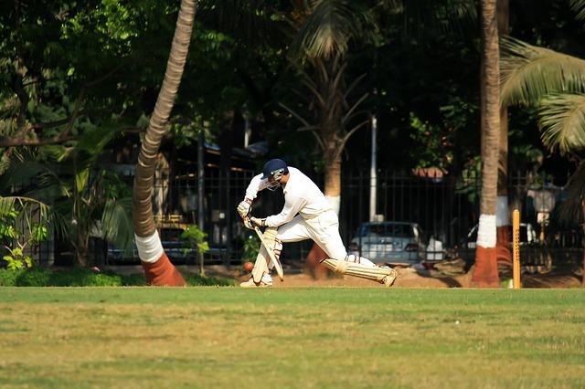 cricket-166928_640
